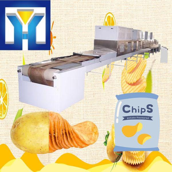 Customized Food Sterilization Equipment Microwave Dryer #1 image