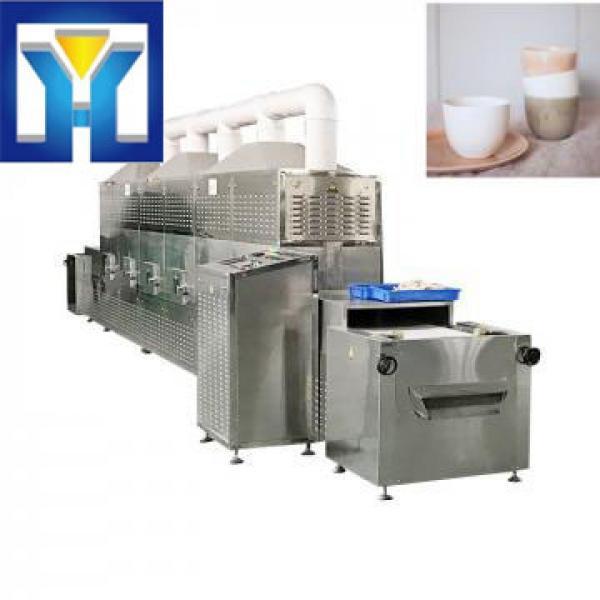 Tunnel Microwave Ceramics Sintering Machine #1 image
