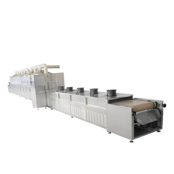 Microwave Vacuum Drying Machine For Chicken Heart #2 image