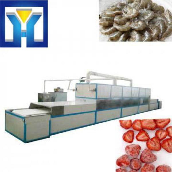 Full Automatic Industrial Meat Thawing Machine #1 image