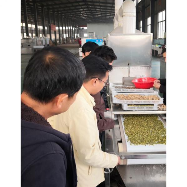 CE Certification 200kw Belt Type Microwave Silica Drying Machine #4 image