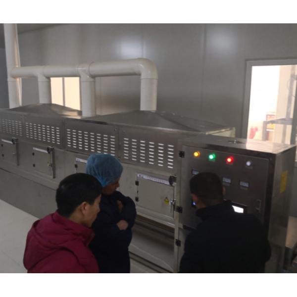 200KW Industrial Phosphate Microwave Drying Machine #3 image