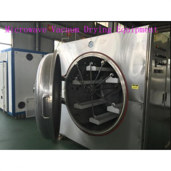 Microwave Vacuum Drying Equipment Box Type Food Sterilizer Machine #1 image