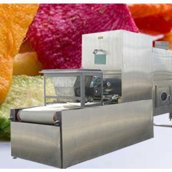 High Efficiency Grain Roasting Microwave Machine #1 image